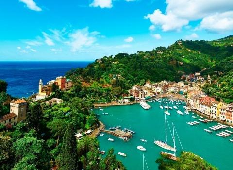 Портофино (Италия). Огромное количество самых разнообразных рыб и дельфинов