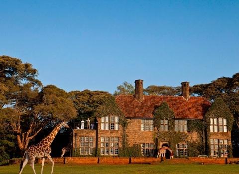 Кенийский отель Giraffe Manor был построен в 1930 году